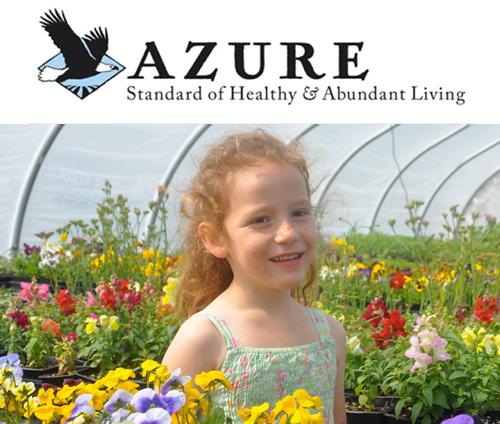 Azure Standard Now Carries Our Tallow Balm!